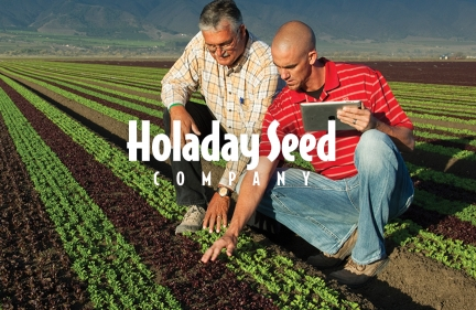 Holaday Seed Website